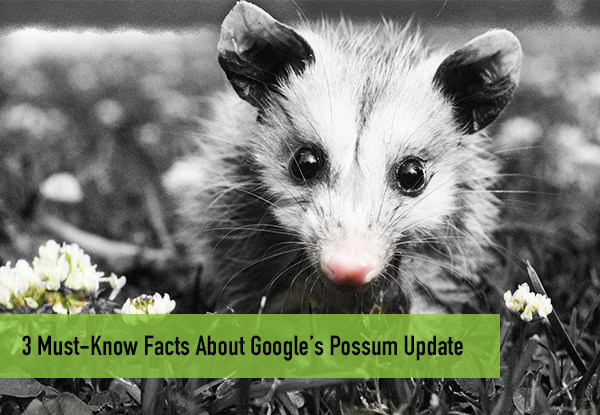 3 Must-Know Facts About Google's Possum Update