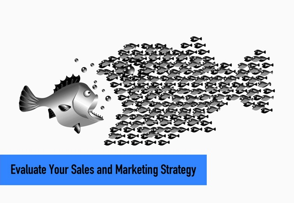 Evaluate Your Sales and Marketing Strategy