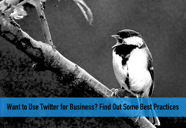 Want to Use Twitter for Business? Find Out Some Best Practices