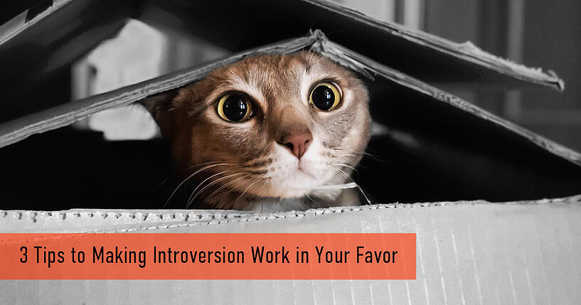 3 Tips to Making Introversion Work in Your Favor